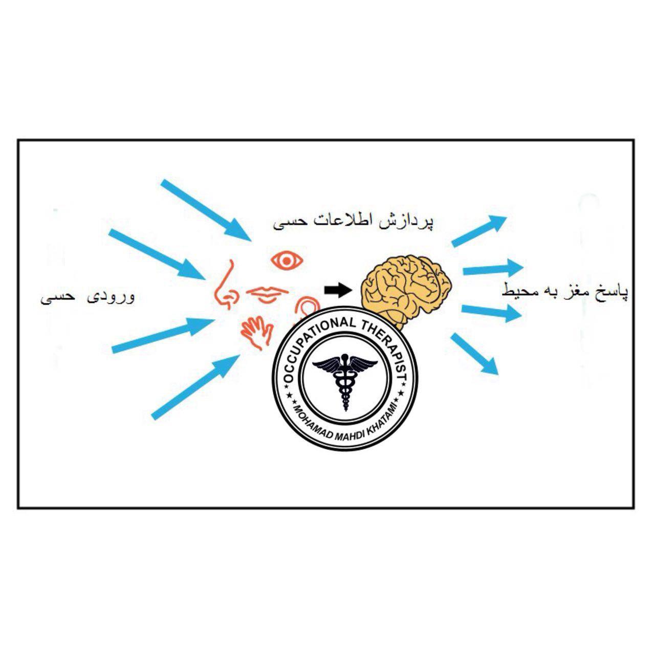 پردازش حسی-کاردرمانی در اتیسم-یکپارچگی حسی-کاردرمانی اوتیسم-کاردرمانی کودکان-کاردرمانی در کودکان-کاردرمانی غرب تهران