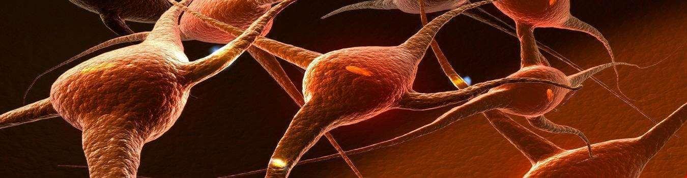 مغز کودک چگونه رشد میکند؟